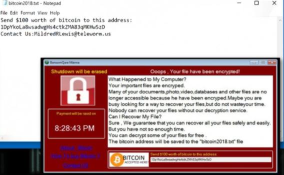 Lina ransomware