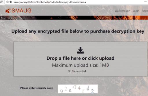 Smaug ransomware