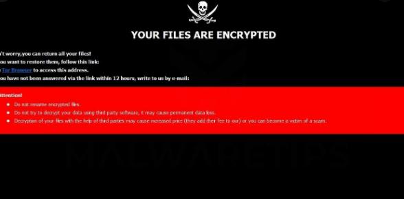 Fjerne TEREN ransomware