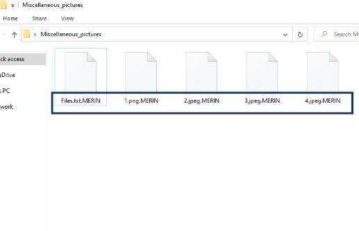 MERIN Files Ransomware
