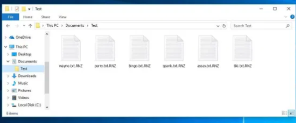 .RNZ Files Ransomware ازاله