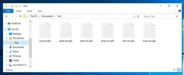 Sglh file virus