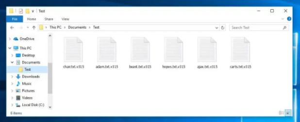 v315 ransomware