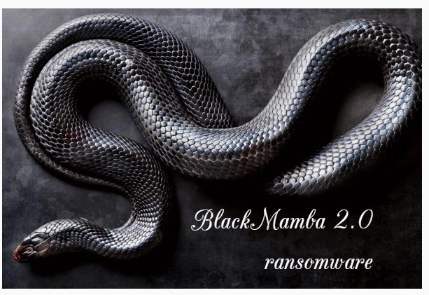 BlackMamba file