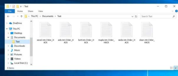 C0der_HACK ransomware