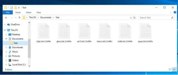 Cm99v Files Ransomware