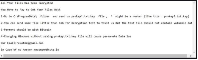 Octane ransomware