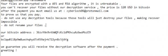 Verwijderen BiggyLocker Ransomware
