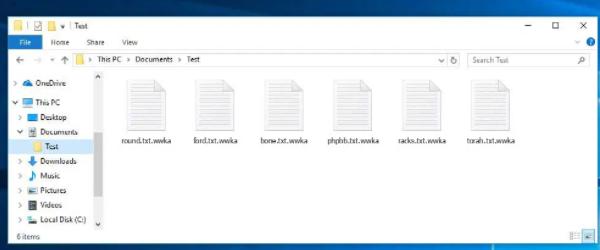 Wwka file Ransomware