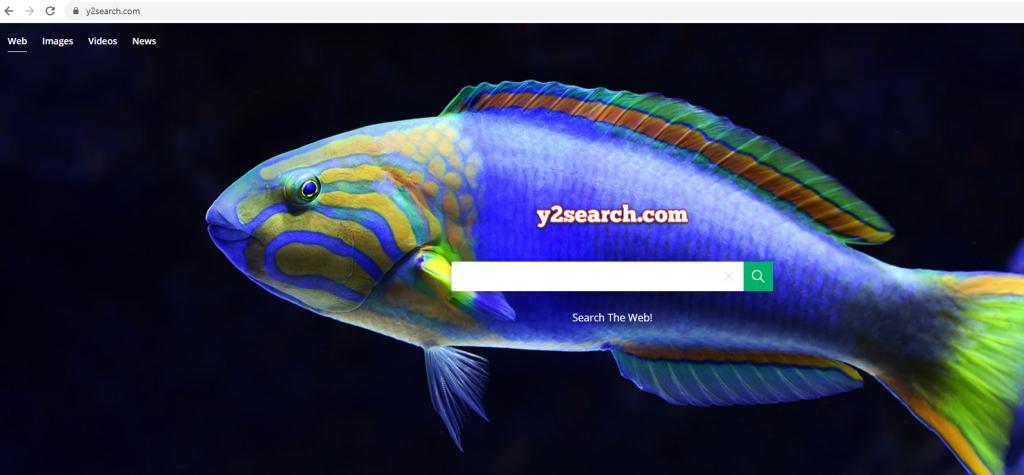 Y2search