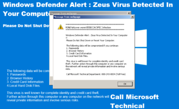 Zeus Panda virus