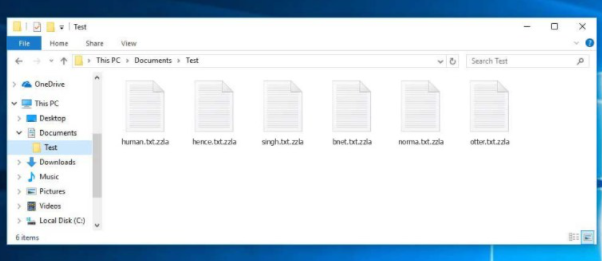 Zzla file ransomware