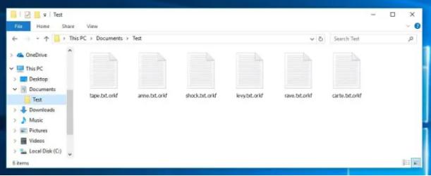 Orkf File Virus Ransomware