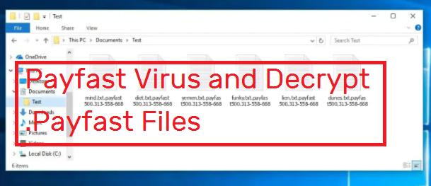 Payfast Virus