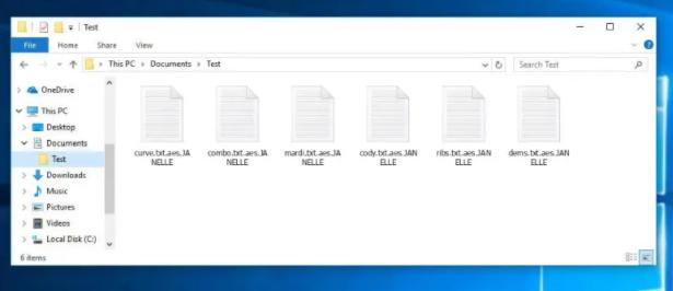 JANELLE file virus Ransomware