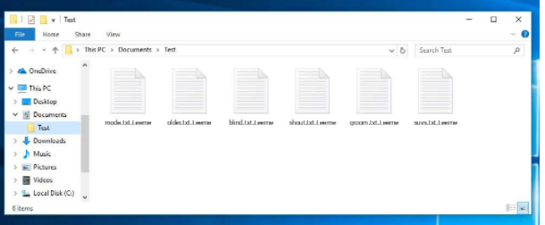Leeme Files Ransomware
